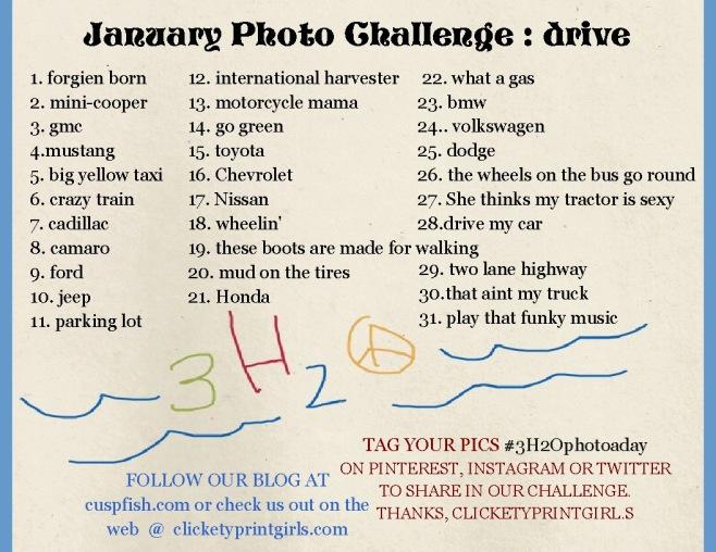 Photo Challenge Jan 2013