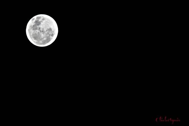 moon1 - Copy